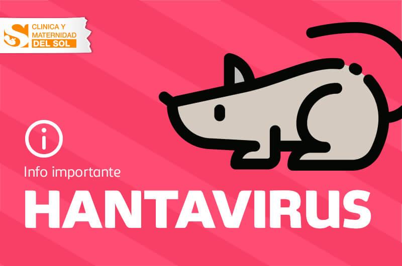 Hanta Virus